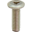 Tamper-resistant Special Low Head Screw
