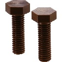 Plastic Screw - Hex Head Screws - VESPEL(Grade:SP-1)