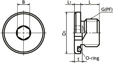 SFMS-G_Hexagon Socket Flange Head Screw Plugs with O-rings